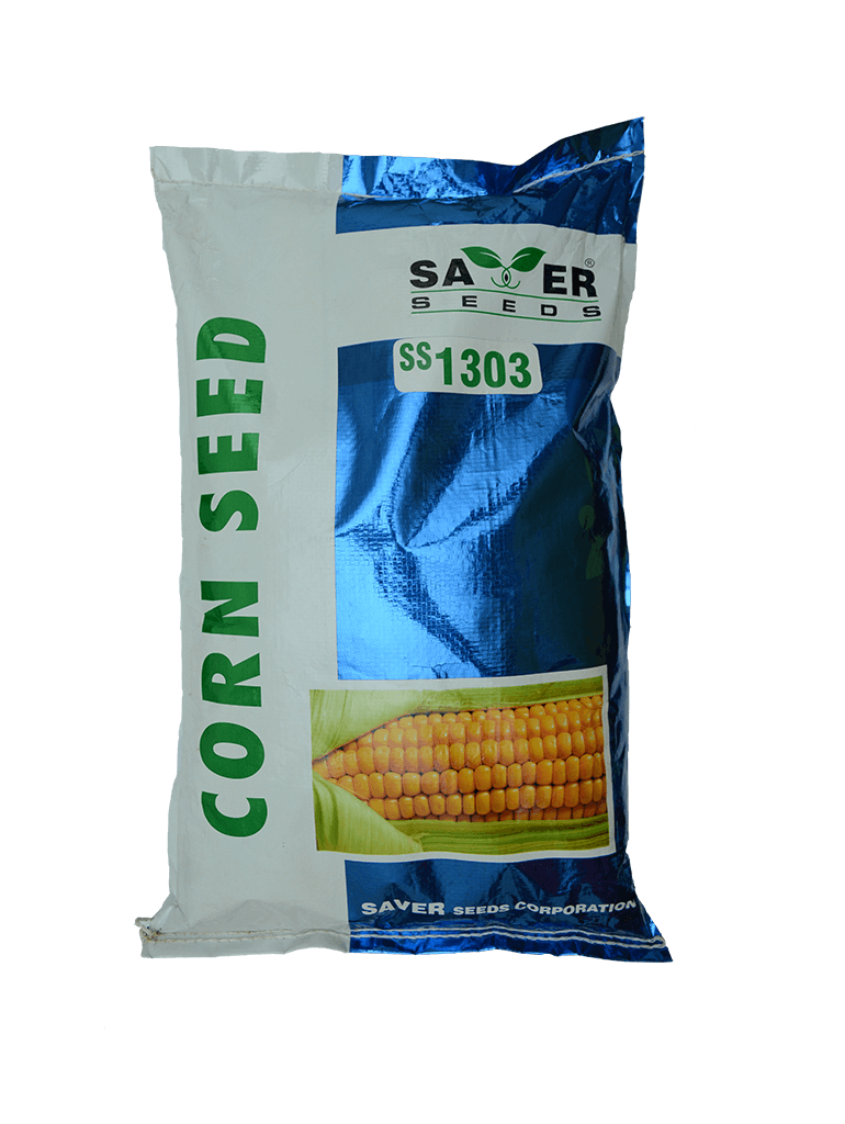 32351corn-seed-ss1303.png